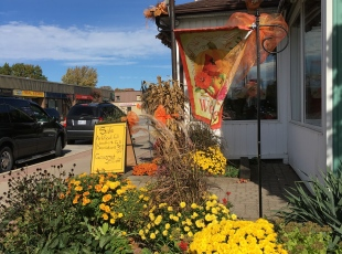 Flowers and Gifts Downtown Port Elgin